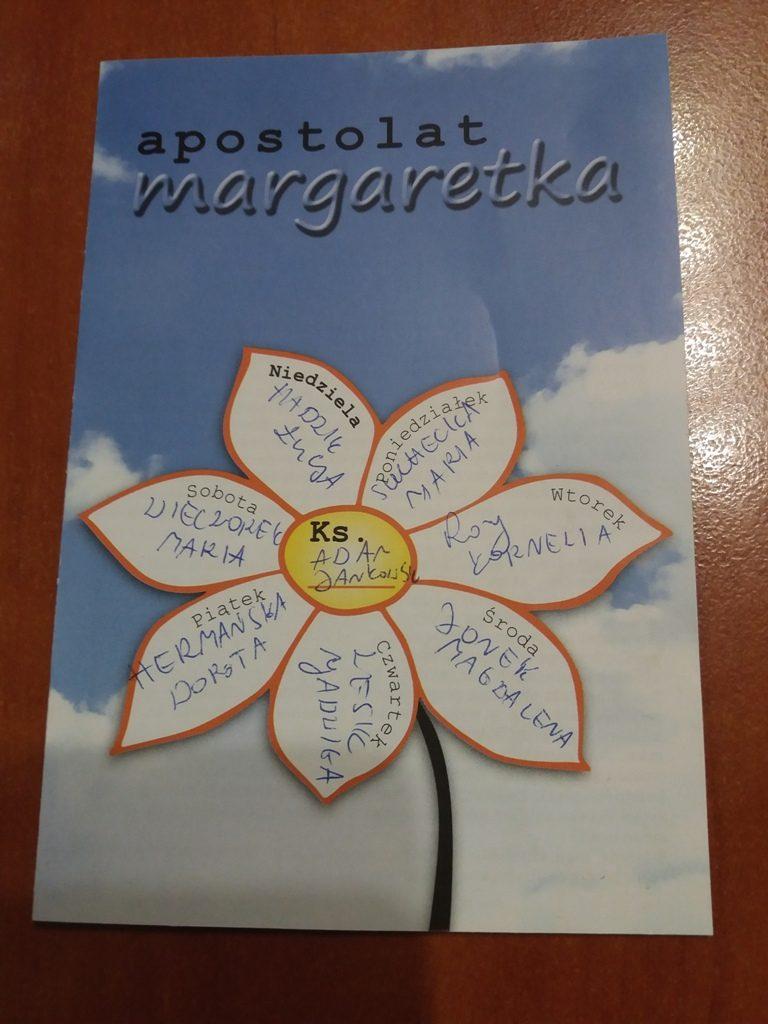 Obrazek posiada pusty atrybut alt; plik o nazwie Margaretka-2-e1593194560419.jpg