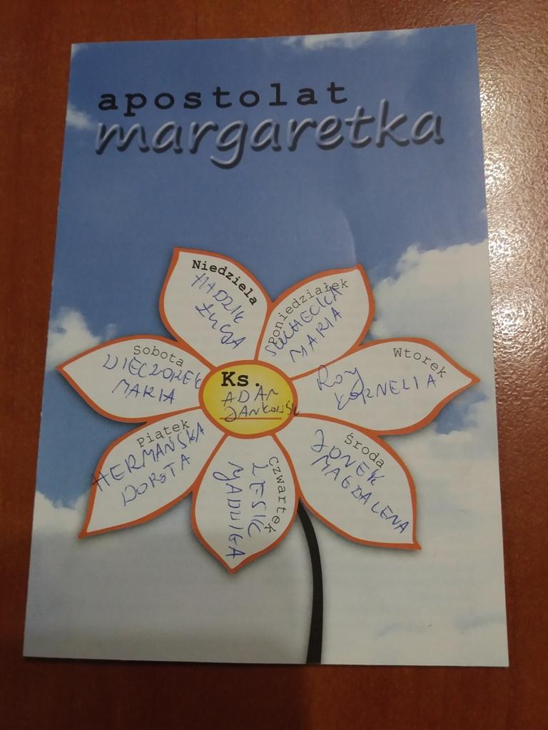 Obrazek posiada pusty atrybut alt; plik o nazwie Margaretka-2.jpg